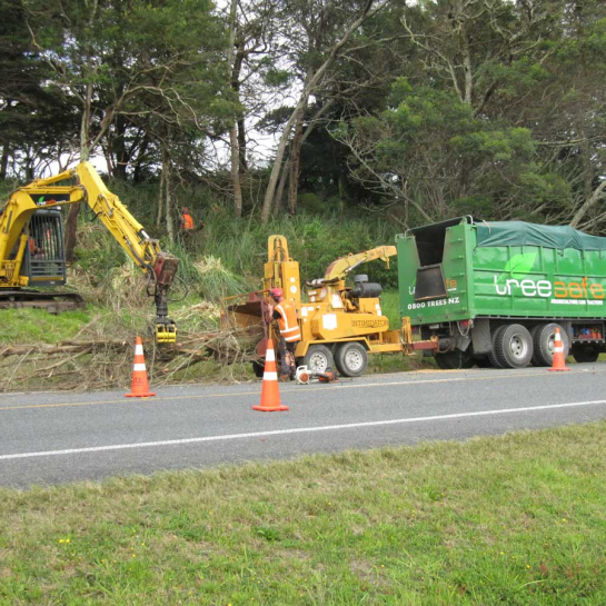 Road side tree clearing