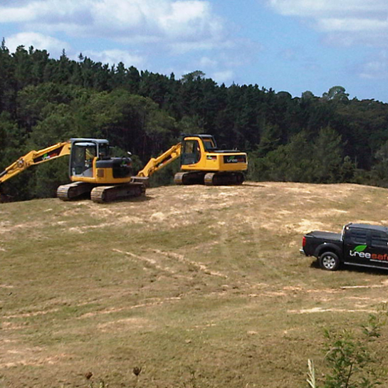 Website-Landclearing